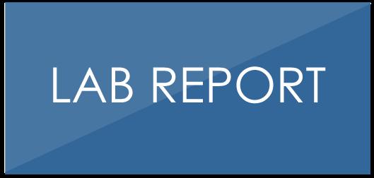 click-report.png